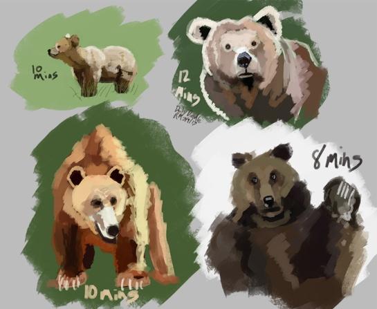 Bears_ohMY